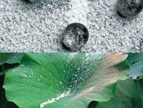 Биомиметические материалы и новые методы производства