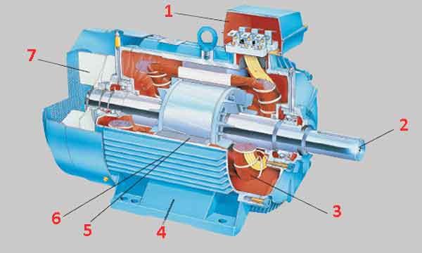 Конструкция асинхронного электродвигателя