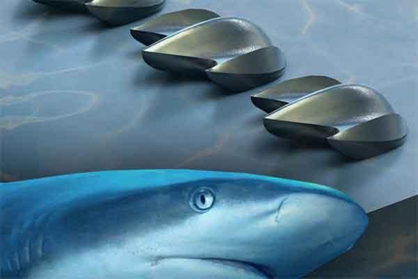 Как акулы помогли создать новый вихревой генератор