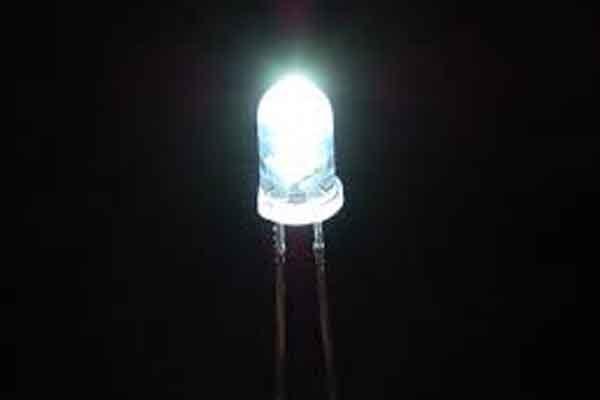 Выявлено: светодиодные лампы губят дикую природу