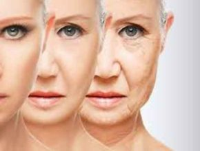 Как делали анализ старения клетки и определяли возраст