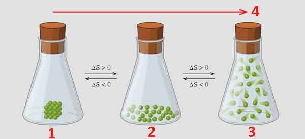 Химический эффект энтропии