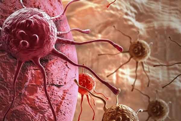 Гибридный щёлк – новая фотокаталитическая терапия