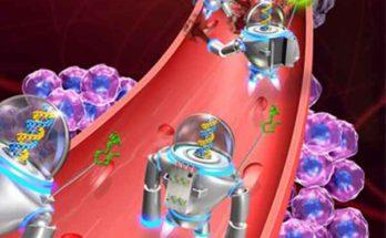 Роботы на основе ДНК и магнитная система управления