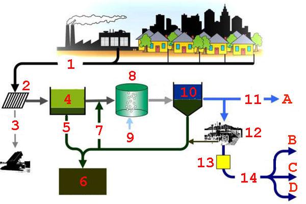 Схема получения биосолидов в процессе очистки стоков
