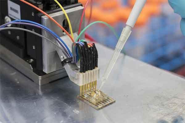 Транзистор органический скоростной создан учёными