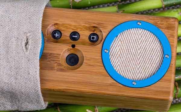 Система Bongo-Bamboo для миллениала и эхо-бумера