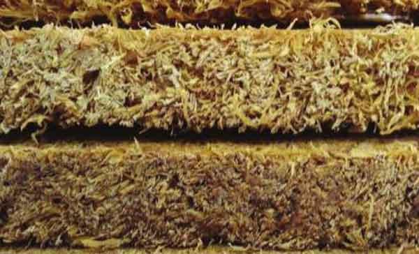 """""""Кукурузная"""" изоляция обещает эффективные изолирующие свойства"""