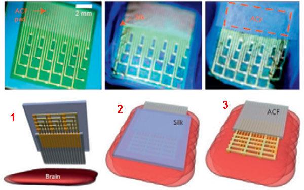 Биосовместимые материалы для солнечных элементов