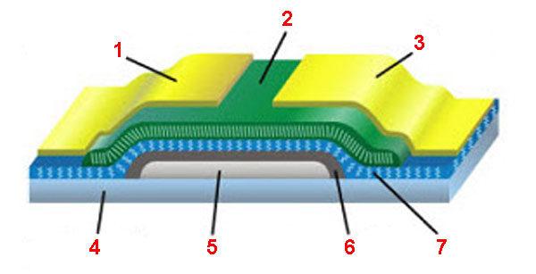 Биосовместимые материалы и пример построения фиксируемой подложки