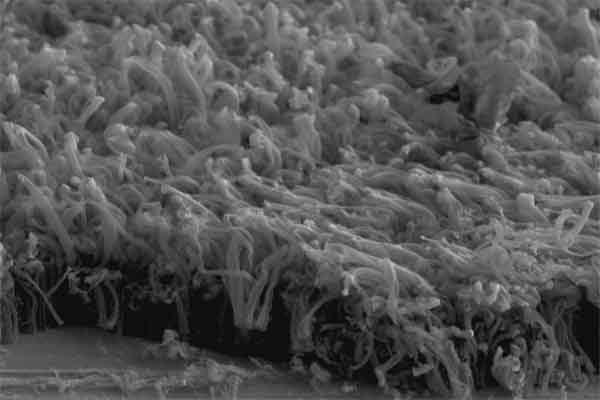 Фактор образования дендритов литий-ионных батарей определён учёными