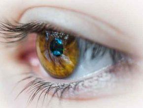 Алгоритм под лечение глаз искусственным интеллектом разработали учёные